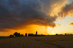 Rare Rain (Matt Champlin) Tags: life sunset summer hot nature weather clouds canon fun outdoors peace dynamic farm foreboding farming july peaceful adventure heat thunderstorm summertime storms summerrain 2016 rainshowers