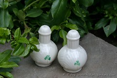 Belleek Salt & Pepper (Historic Gardens) Tags: dinner spring novascotia 26 auction may historicgardens annapolisroyal 2013