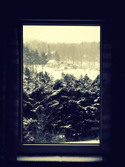 Framed (freyavev) Tags: trees winter house snow window germany deutschland thringen fenster thuringia frame fir curtains prozor triebes