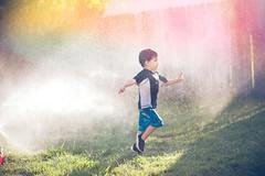 Run! (Daniel A Ruiz) Tags: light boy droplets spring backyard bokeh 85mm running sprinkles leak d700
