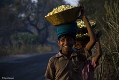 Tribal boys returning home after collecting the Mahua flowers (Bharat Baswani) Tags: tribal tribe pradesh madhya mahua alirajpur