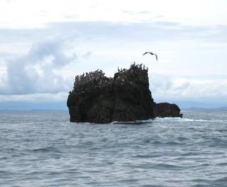 Costa Rica Adventure Lodge 14
