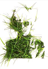 Andy Warhol Grass Art by Xavier Ride (Xavier Ride) Tags: andywarhol pochoir gazon grassart xavierride