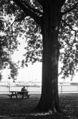 (Noelia RT) Tags: blackandwhite toronto canada blancoynegro bench relax landscape moments loneliness banco couples paisaje bn bancos canad parques relaxtime