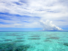 Shallow water reefs in Rock Islands, Palau (mattk1979) Tags: blue sky water clouds island turquoise pacificocean tropical reef palau