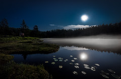 Insomnia (North Face) Tags: trees summer moon lake nature water norway fog night forest canon reflections stars landscape eos see mond norge long exposure nebel nacht outdoor mark sommer iii norwegen sigma full 5d scandinavia wald bume 1224mm sterne vollmond langzeitbelichtung uwa 15s austagder mykland uvatn