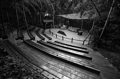 A Whole Day's Show Is Over (Picocoon) Tags: show china blackandwhite bw forest silent stage over documentary bamboo worker dinning liyang