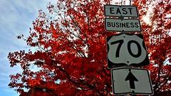 eastern fall (Rotholandus -> Check descriptions!) Tags: autumn fall durham north east carolina otoo norte autumnus