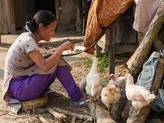 Eating (Dick Verton) Tags: travel nepal people food woman chicken smile waiting colorful asia sitting rice eating streetlife streetscene sit seated streetview sauraha streetshot villagelife dickverton