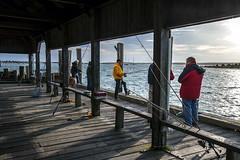 Morning @ the Coal Pier (cbonney) Tags: pier town marthas vineyard dock fishermen massachusetts coal edgartown