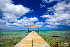 Boat jetty (Dibrova) Tags: ocean travel sea summer vacation sky seascape beach nature water relax island coast pier paradise day footbridge jetty horizon indianocean scenic calm exotic shore tropical remote mauritius idyllic tranquil cloudscape pontoon