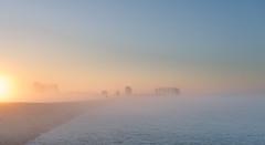 _DSC5624.jpg (Ingeborg Ruyken) Tags: morning autumn sky sun mist ice fog sunrise dawn haze nevel flickr frost december herfst freezing lucht polder zon risingsun ochtend facebook ijs boerderij vorst zonsopkomst kruisstraat natuurfotografie vriezen 2013 opkomendezon catsunriselandscape