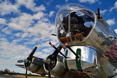 USAAF Boeing B-17G Flying Fortress 'Sentimental Journey'- Commemorative Air Force, Falcon Field, Mesa Arizona.. (edk7) Tags: nikond3200 edk7 2013 usa arizona mesa falconfieldairport kffz commemorativeairforce arizonawingaviationmuseum unitedstatesarmyairforces usaaf boeingb17gx5dlflyingfortress heavy bomber sentimentaljourney 4483514 n9323z douglaslongbeach1944 wrightcycloner182097radial1200hp chinturret secondworldwar worldwartwo worldwarii worldwar2 wwii ww2