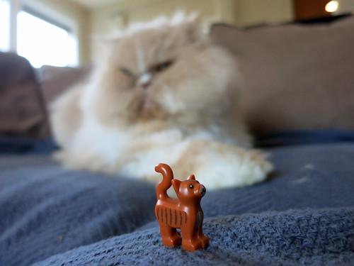 LEGO Persian Cat