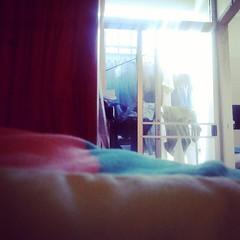 ทำงาน.. ตากผ้า..~