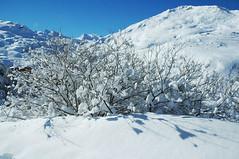 paysage-splendide-17-02-2014