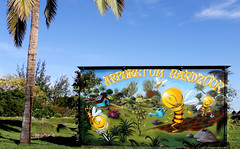 "Jace et les abeilles ""Arboretum Bardzour"" (frankyrun54) Tags: streetart graffiti tag graf arboretum graff jace graffitiart graffitis iledelareunion artdelarue ledelarunion jacegraftaggraffitis frankyrun taggrafgraffitisfrankyrun graffitisiledelareunion bardzour arboretumbardzour"