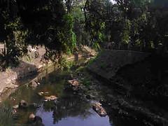 SAMPAH DI BOGOR (anton_ardyanto) Tags: lingkungan sampah