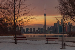 Framed (A Great Capture) Tags: city trees winter sunset snow toronto ontario canada cold ice skyline architecture buildings bench downtown photographer cntower view dusk snowy canadian to benches on agc wardsisland 2016 ald ash2276 lovelycity adjm lhiver dreamscapsoftoronto ashleylduffus wwwagreatcapturecom agreatcapture