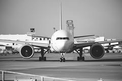 Frankfurt Airpot / Flughafen Frankfurt (Alexander Kurz) Tags: canon germany de deutschland airport hessen frankfurt boeing flughafen fra frankfurtammain fujineopan1600 kelsterbach aerologic vsco boeing777f canon5dmkiii 5dmkiii daalg