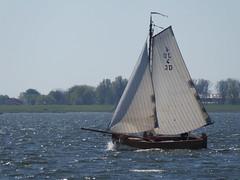 JD 4 Simmernocht at the IJssellake (Alta alatis patent) Tags: sailing jol st63 jd4 ijssellake simmernocht