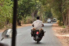 DSC_7151 (Omar Rodriguez Suarez) Tags: cambodia motorbike moto motorcycle motocicleta camboya