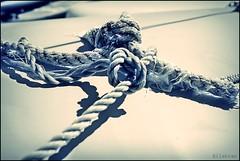 Difficulties (nathaliedunaigre) Tags: blue boat bleu sail bateau voile knots noeuds liens