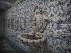 """Fountain of youth"" (JG - Instants of light) Tags: abandoned portugal water gua stone decay interior indoor tiles forgotten fujifilm mansion pesca pedra daybyday hunt azulejos countryhouse sl1000 fishery urbex casadecampo abandonado manso diaadia decadncia esquecido caar fontedajuventude"