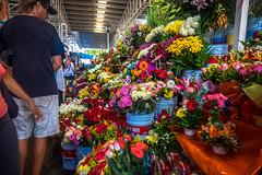 Visiting the Mercado Municipal.