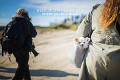 First Dog Photography Workshops in Denmark, Olsted - 22-24 April 2016 (Alicja Zmysowska) Tags: dog green denmark photography spring workshop springtime workshops dogphotographer