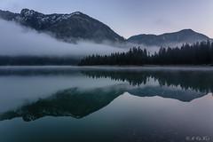 Lake Heiterwang reflections (MC-80) Tags: mist lake misty reflections austria tirol nebel spiegelung tyrol heiterwang heiterwangersee nebelstimmung