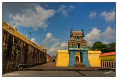 KRP20160417 (msankar4) Tags: nataraja siva tamil nadu konerirajapuram myladuthurai