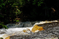 The Lower Falls (joeldinda) Tags: vacation tree june forest river waterfall woods nikon michigan falls shadowplay upperpeninsula lightandshadow attractions d300 2016 tahquamenonfallsstatepark 3145 nikond300
