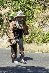 c20140313NFX_1887 (youngman242) Tags: woman color transport goods heavy vegatables honba stphotographia vietnamkhanhhoa