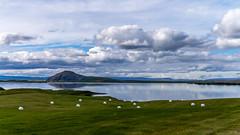 Myvatn Lake (trek22-) Tags: lake iceland europe sony myvatn trek22 nex6