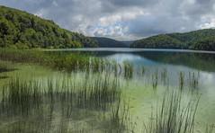 Croatia plitvice lake (Lucie van Dongen) Tags: beautiful landscape scenery scenic lac croatia unesco paysages croatie plitvice