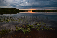 Waiting for Darkness (DJawZ) Tags: sunset lake storm reflection water clouds spring pond stormy chatsworth sunsetwx