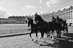 (frscspd) Tags: shadow horses horse film sunshine architecture bath shadows carriage pentax 28mm somerset crescent xp2 georgian ilfordxp2 ilford filmgrain royalcrescent georgianarchitecture horsecarriage pentaxmx 28mmsoft ilfordxp2400bw 20160318 31030018