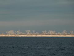 Island Of Mystery (EssGee Photography) Tags: travel ny newyork color brooklyn digital bay gulls tourist dxo floydbennettfield jamaicabay gatewaynationalrecreationarea lumixdmcfz150