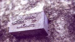 Just to remember (Catalin M.C.) Tags: memorial memory erinnerung altes judische friedhof old jewish cemetery wall mauer frankfurtmain hessen deutschland germany germania