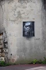 Kidnapped (HBA_JIJO) Tags: urban streetart france animal insect graffiti monkey stencil cage bergman insecte araigne singe pochoir vitry vitrysurseine paris94 hbajijo docteurbergman