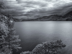 Serenity (Cosmo Coughlin) Tags: red nature beautiful scotland mood olympus calm loch split infra ness cyanotype toning