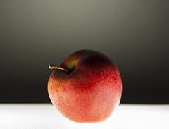 The Shining Apple (Edoardo Vanetti) Tags: life light stilllife apple fruit still shining