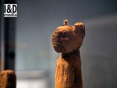 mcat3 (Internet & Digital) Tags: cats ancient god hawk victorian egypt ibis horus ritual mummy isis sacrifice osirus ancientegypt offerings mummified thoth mummifiedcats