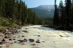 The Open Spaces Of Canada (Alan1954) Tags: holiday canada water river landscape jasper alberta banff 2014 platinumheartaward platinumpeaceaward