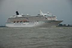 Crystal Symphony (larry_antwerp) Tags: cruise port ship belgium belgi vessel antwerp passenger schelde  antwerpen  schip      crystalsymphony                       9066667