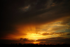 Rough Summer 2016 (Harry Kool) Tags: summer sun weather clouds wolken rough medemblik weer 2016 wieringermeer ssunset