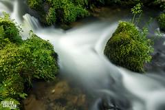 L'eau coule (Aurlien GROSJEAN) Tags: canon landscape juin eau paysage cascade printemps f28 vosges hoya fil filtre lumirenaturelle 2016 ruisseau nd400 1755mm poselongue 70d faymont aurliengrosjean