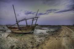 Alone in Al Shamaal - Qatar (zai Qtr) Tags: sea beach sand nikon alone outdoor lowtide doha qatar dhow alshamal zaiqtr