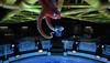(funtribecorp) Tags: nemo disney destiny pixar bailey animation hank dory marlin fluke findingnemo rudder ellendegeneres dominicwest eugenelevy dianekeaton albertbrooks lindseycollins edo'neill idriselba andrewstanton kaitlinolson pixaranimation tyburrell findingdory